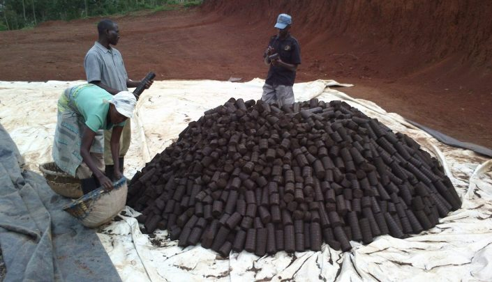 Finished briquettes on display