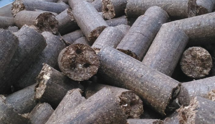 Briquettes from pineapple waste