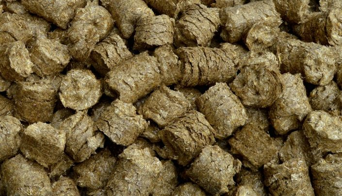 Straw briquettes ready to be fed into the digester